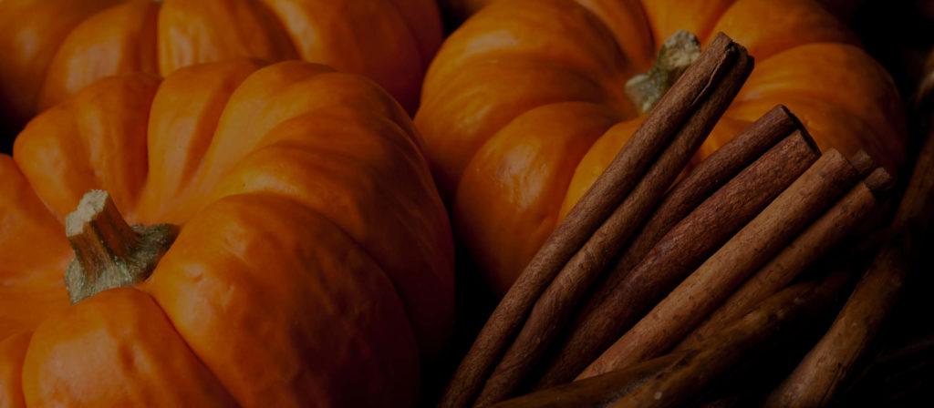 Fall Seasonal_Digital_2016_Web Carousel 3