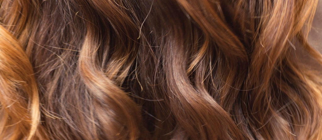 tortoiseshell-hair-blog-header