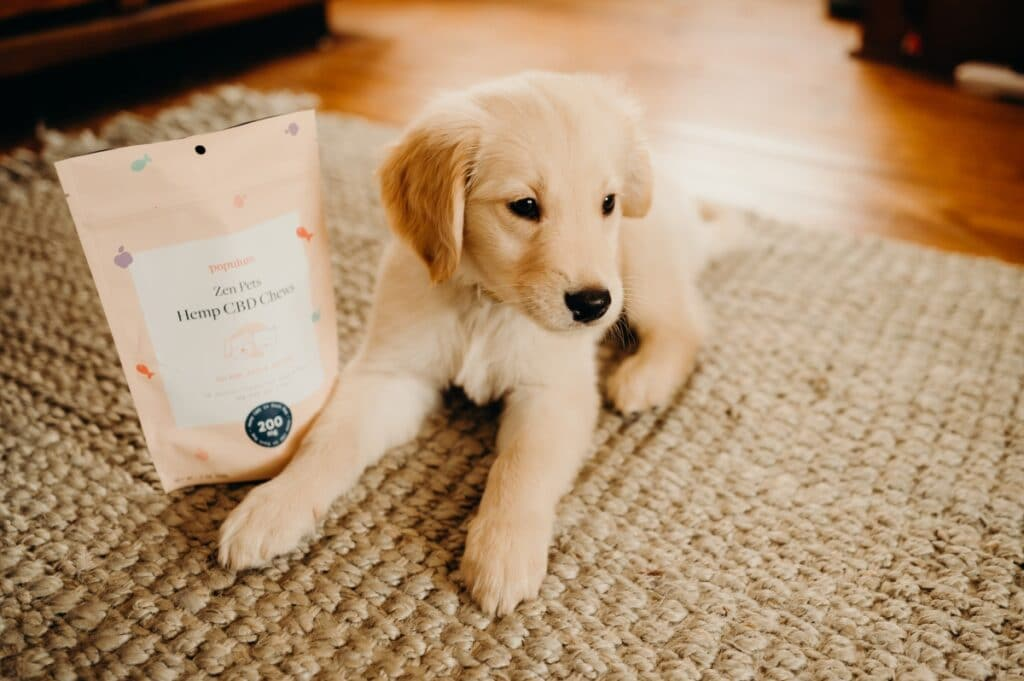 NEW to PENZONE: Populum CBD products for pets